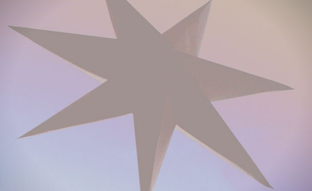 stjernefsweb