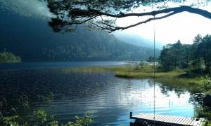 Sessvatnet, Ikornnes. Foto: Vivian Johnsen