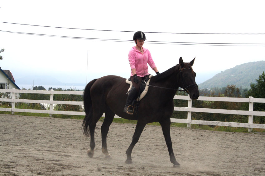 - Stine Skogen og er ei blid og hjelpsam jente. Ho passer hesten min ofte, seier May Lisbeth Riksheim (Foto: Hanne Suorza)